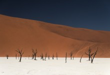 Namibie - deadvlei